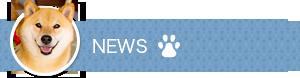 News Title SP