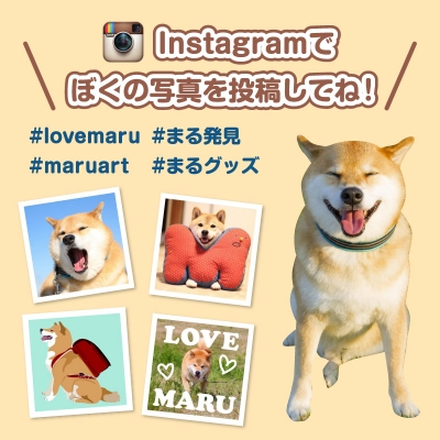 maru_top_150920